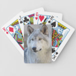 Gray Wolf Closeup Bicycle Playing Cards