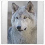 Gray Wolf Closeup Napkin