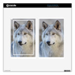 Gray Wolf Closeup Skin For Kindle Fire