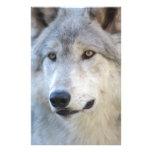 Gray Wolf Closeup Stationery