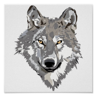 Gray Wolf Design Poster