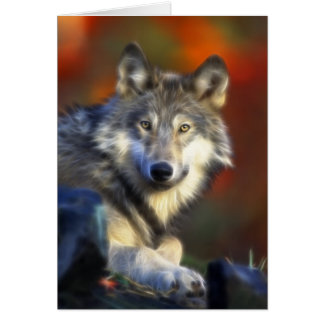Gray Wolf, Endangered Species Digital Photography Card