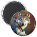 Gray Wolf, Endangered Species Digital Photography Refrigerator Magnets