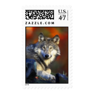 Gray Wolf, Endangered Species Digital Photography Postage