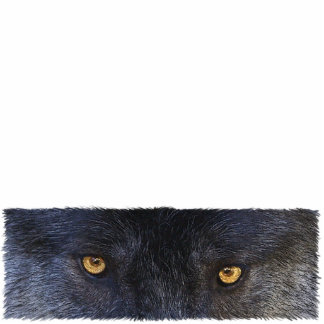 GRAY WOLF EYES (sculpted) Wildlife Gift Item Photo Sculpture Magnet