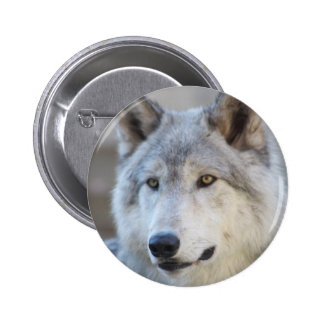 Gray Wolf Face Button