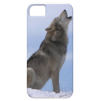 gray wolf iPhone 5 cases