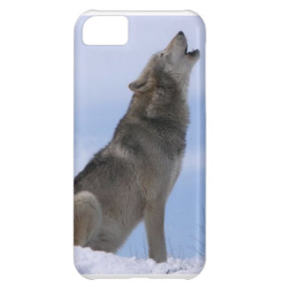 gray wolf iPhone 5C covers