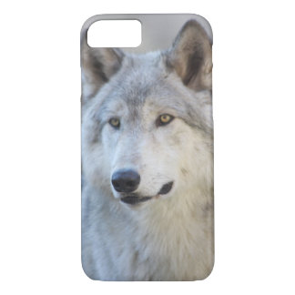 Gray Wolf iPhone 7 Case