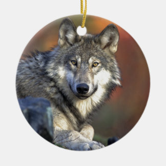Gray wolf Double-Sided ceramic round christmas ornament