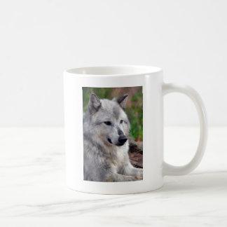 Gray Wolf Pose-168 Mugs