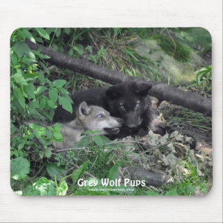 Gray Wolf Pups Playing Wildlife Nature Photo Mouse Pad
