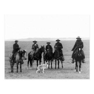 Gray Wolf Roundup, 1887 Postcard