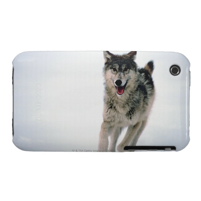Gray wolf running iPhone 3 Case-Mate case