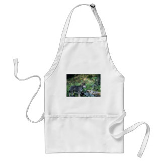 Gray Wolf-small pup in green woods Adult Apron