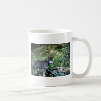 Gray Wolf-small pup in green woods Mugs