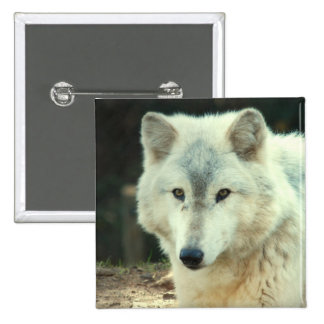 Gray Wolf Square Pin