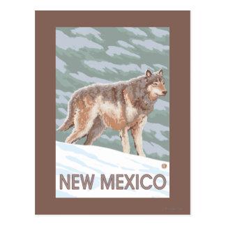Gray Wolf StandingNew Mexico Postcard