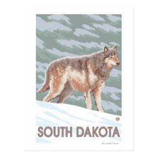 Gray Wolf StandingSouth Dakota Postcard