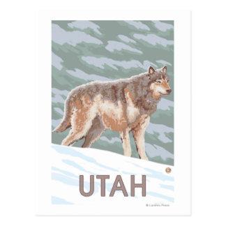 Gray Wolf StandingUtah Postcard