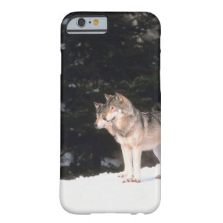 Gray wolves barely there iPhone 6 case
