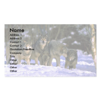 Gray Wolves-pack at edge of snowy forest Business Card Templates