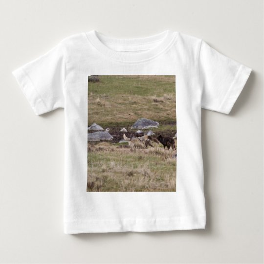 Gray Wolves Playing Baby T-Shirt