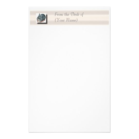 Gray Wooly Rabbit Stationary - From the Desk of .. Stationery