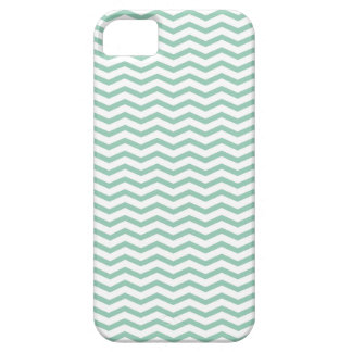 Grayed Jade Solid iPhone SE/5/5s Case