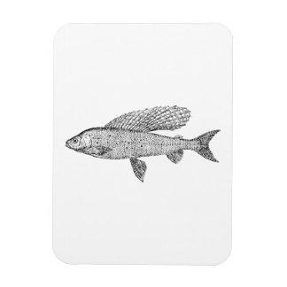 Grayling Fish Rectangle Magnet