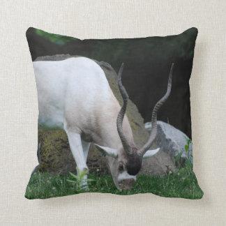 Grazing Addax Pillow