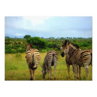 Grazing African Zebras 5.5x7.5 Paper Invitation Card