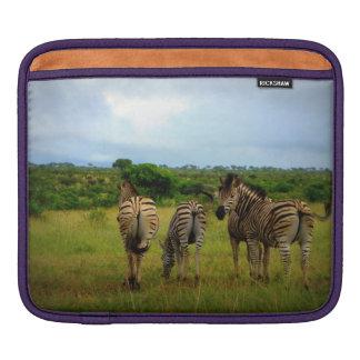 Grazing African Zebras iPad Sleeve