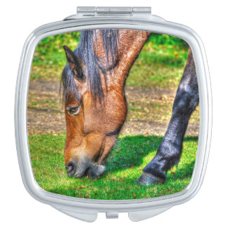 Grazing Bay New Forest Pony for Horse-lovers Makeup Mirror