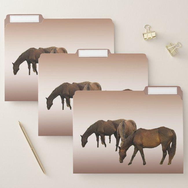 Grazing Brown Horses File Folder Set