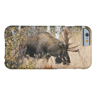 Grazing Bull Moose Barely There iPhone 6 Case