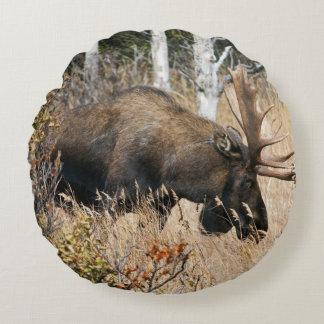 Grazing Bull Moose Round Pillow