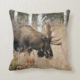 Grazing Bull Moose Throw Pillow