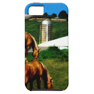 Grazing iPhone 5 Covers