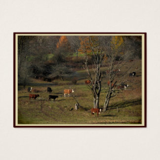 Grazing Cows ATC Business Card