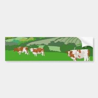 Grazing Cows Car Bumper Sticker