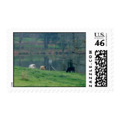 Grazing Cow's stamp