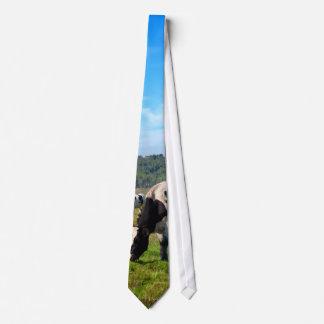 Grazing Cows Tie