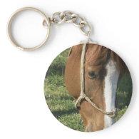 Grazing Draft Horse Keychain