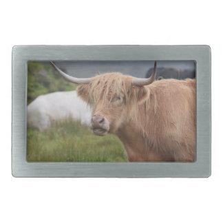 Grazing Highland Cow Rectangular Belt Buckles