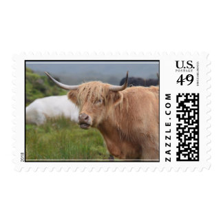 Grazing Highland Cow Postage