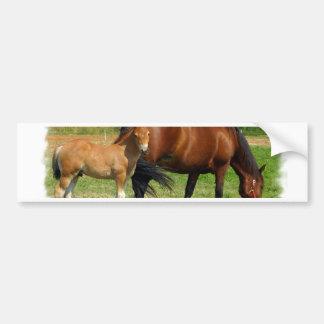 Grazing Horse Family Bumper Sticker Car Bumper Sticker