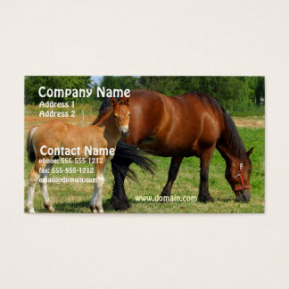 Grazing Horse Family Business Card
