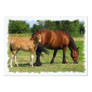 """Grazing Horse Family Invitation 5"""" X 7"""" Invitation Card"""