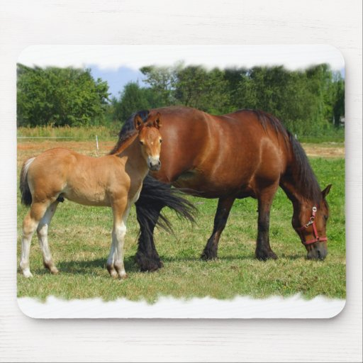 Grazing Horse Family Mouse Pad  Mouse Pad